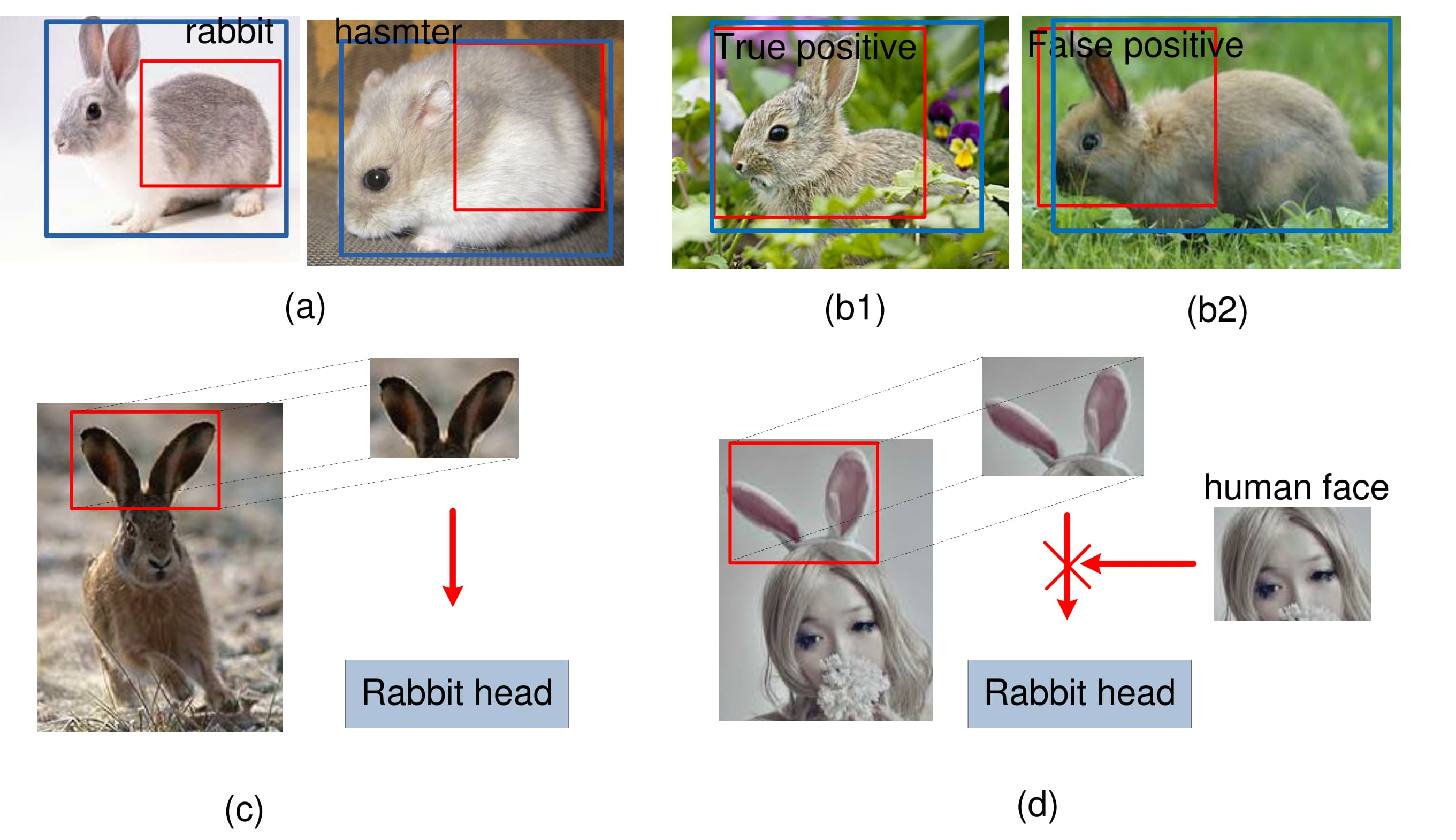 GBD-Net for object detection